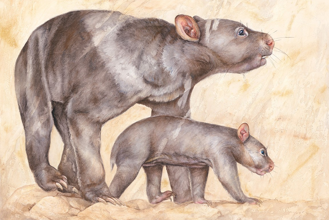 Illustration of mother and calf diprotodons, wombat-like mammals.
