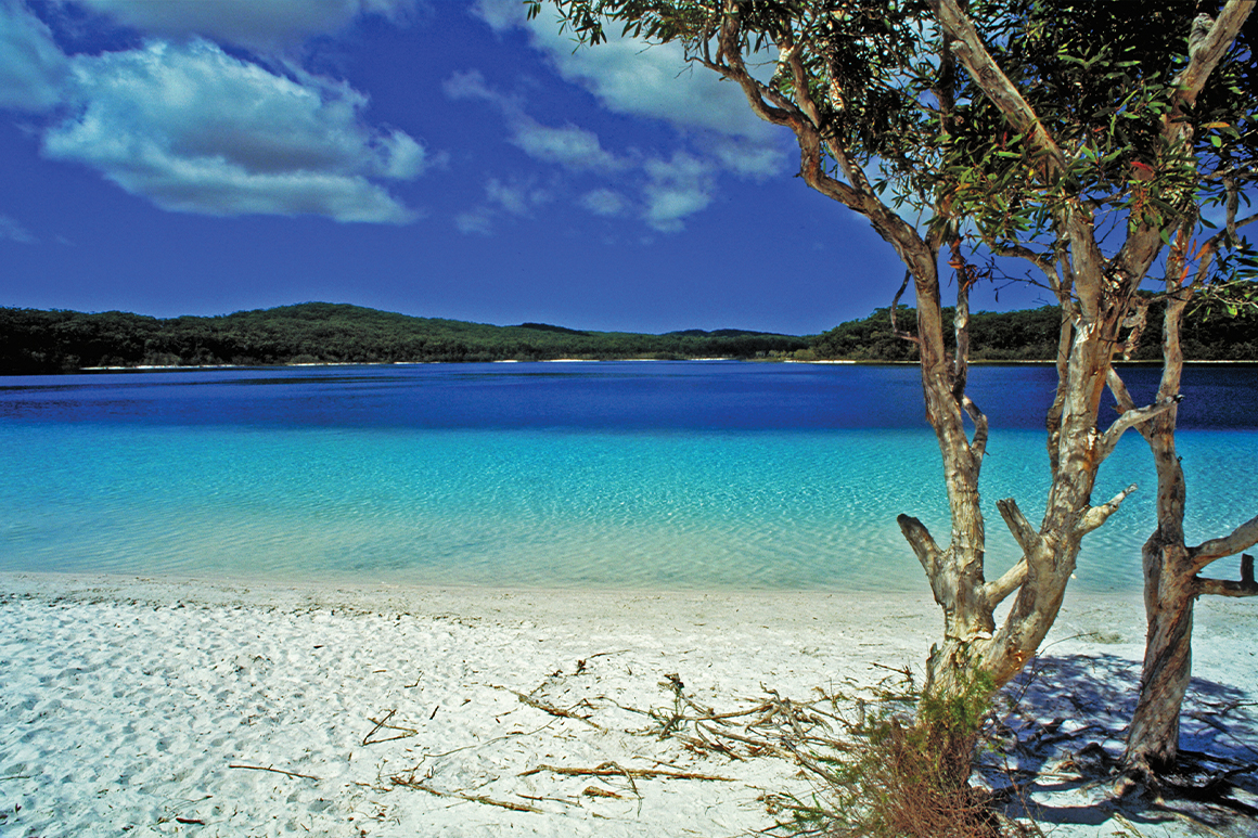 White sands and shallow turquoise waters have a backdrop of deep blue lake and distant forested dunes.