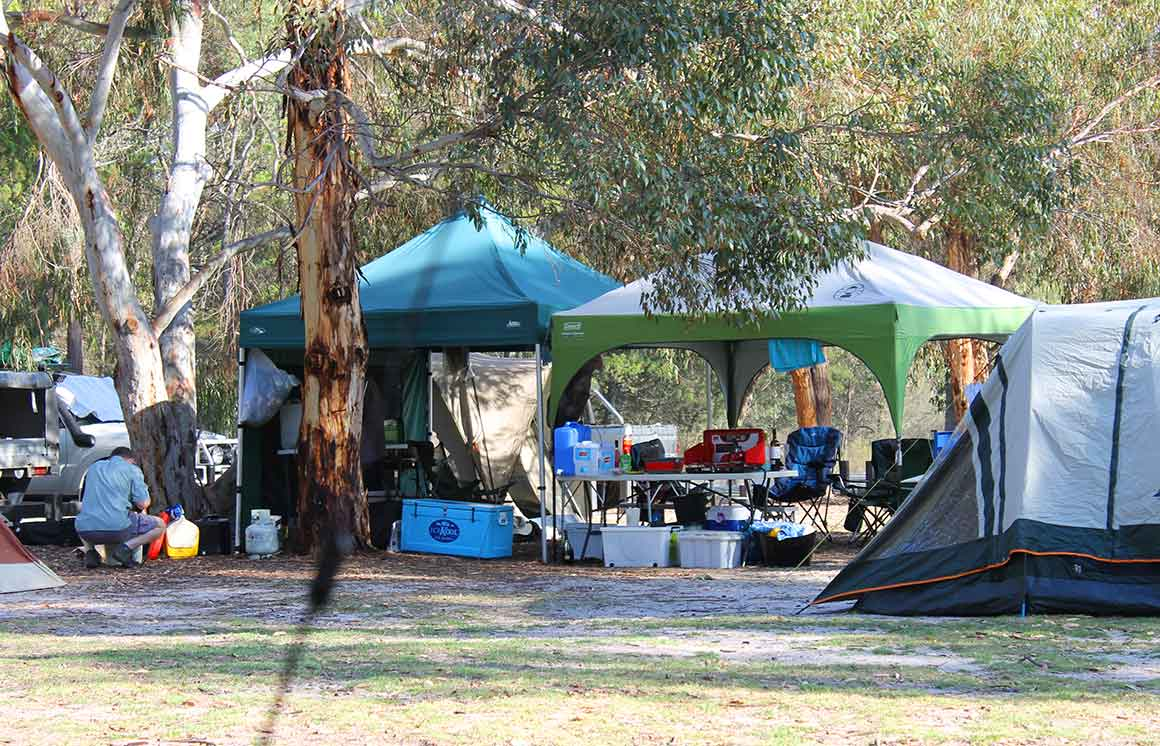 A car and tent are separated by two pop-up camping shelters harbouring camp chairs, tables, eskies, plastic bins, water cans, gas bottles and other camping gear, against a forest backdrop.