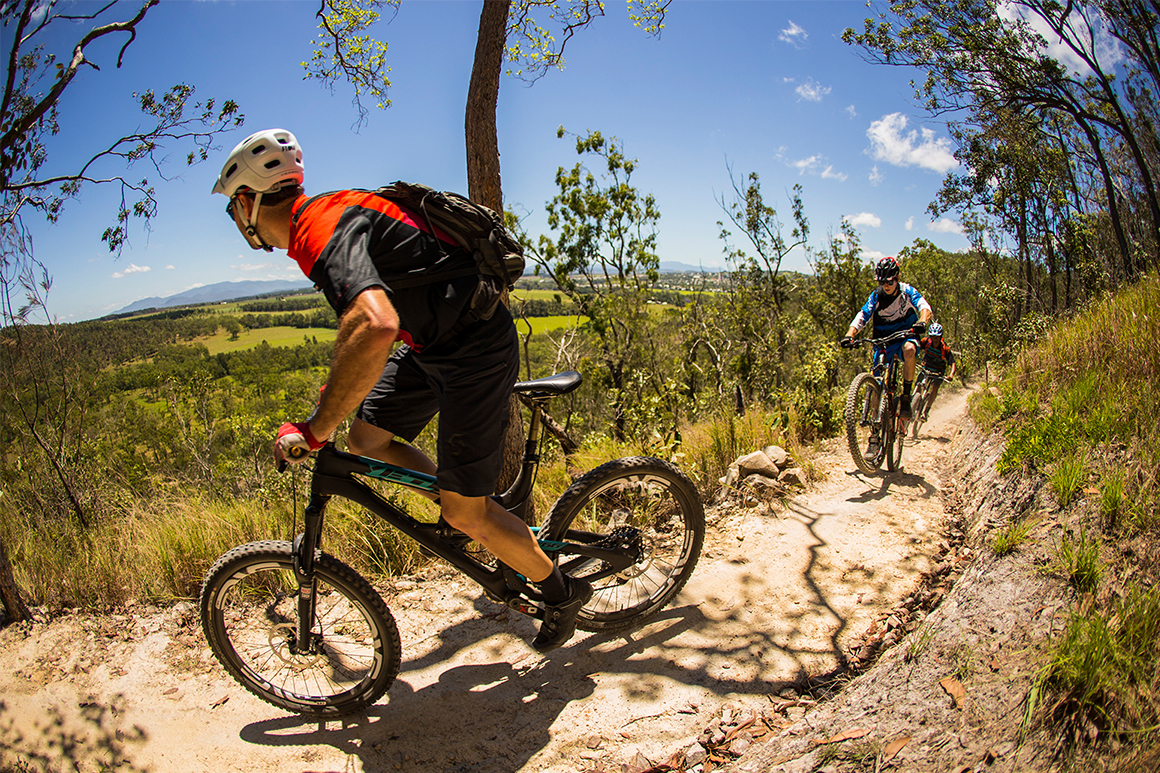 Two men in lyrca pedal mountain bikes around a bend on a dirt trail fringed by native grasses and open eucalypt woodland.